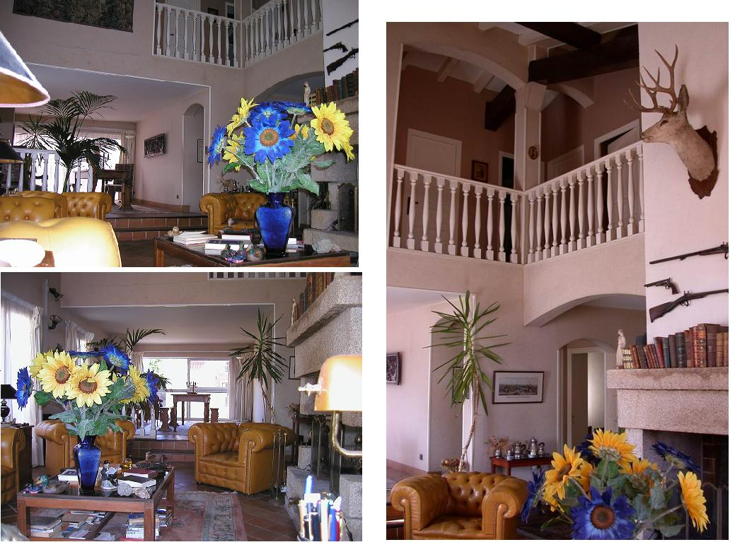 #9F862C Preview 4473 décoration feng shui salle à manger 1039x774 px @ aertt.com